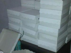 nasi kotak3